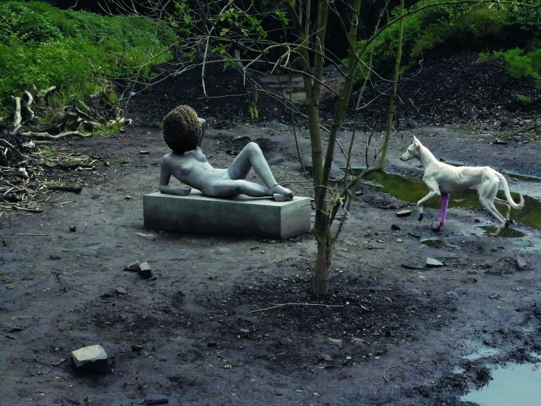 بيير فايغ أرض غير مفلوحة, 2011-12 بلطف من الفنان، غاليري مريان غودمان، غاليري هاوزر فيرت وغاليري استر شيبر، برلين