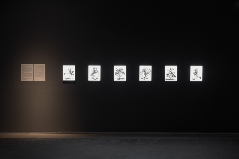 Nir Evron, Pangymnasticon  Installation view, Tel Aviv Museum of Art, 2016. Design: Dan Hasson. Installation photography: Elad Sarig